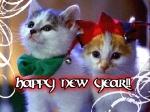 gatti_new_year