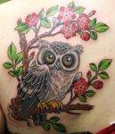 bart-bingham-owl
