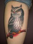owl-tattoo-on-arm1